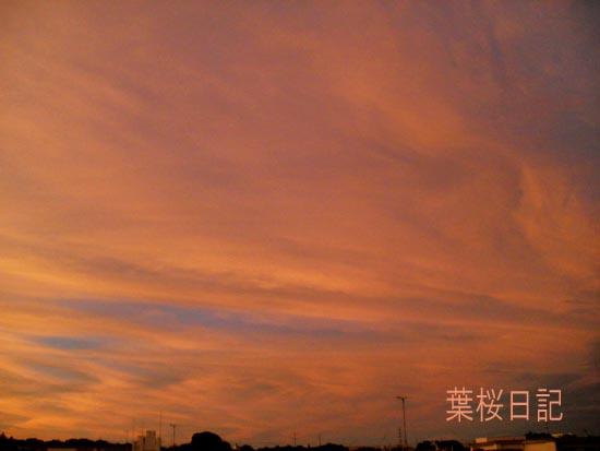 台風が去って夕焼け.jpg