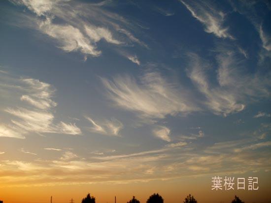 秋空、夕焼け.jpg