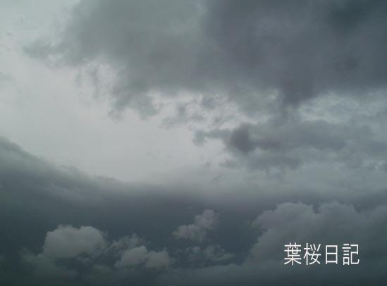 台風の空、明るくなってきた.jpg